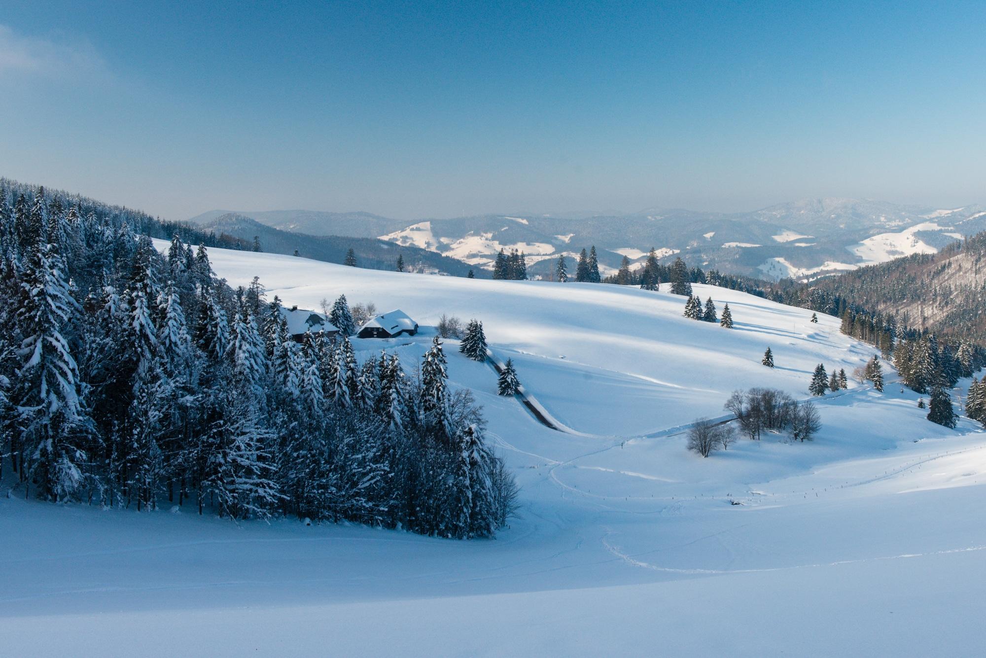 Verschneite Schwarzwaldlandschaft